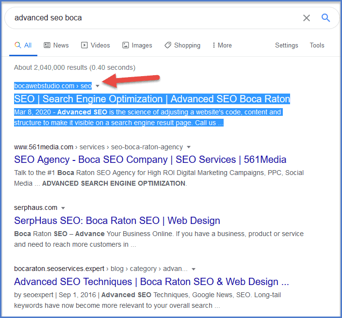 Advanced SEO Copy Writing